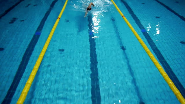 Aerial view of a professional swimmer video
