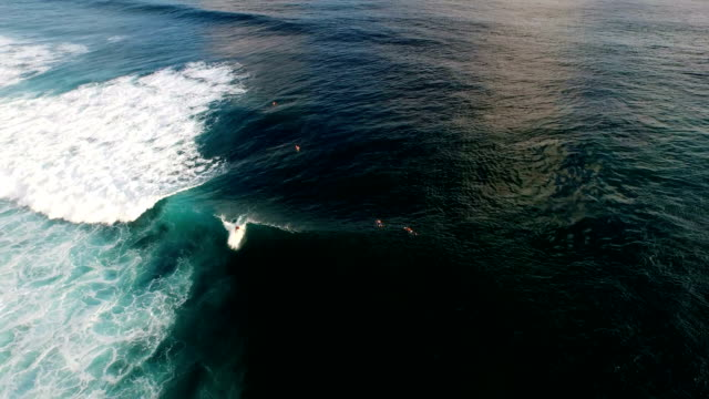 Aerial view of a short surf ride on a wave video