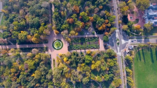 Aerial view of autumnal nature scenery in city park video