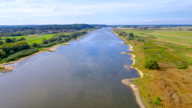 Aerial View of biosphere reserve ' Niedersächsische Elbtalaue ' and River Elbe in Lower Saxony, Germany video