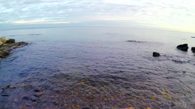 Aerial View of Black Sea Beach video