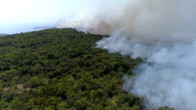 aerial view of burning bushes in the hills video