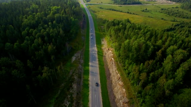 aerial view of car driving on a road in the woods video