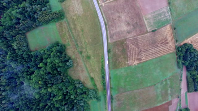 Aerial View Of Car On Foggy Rural Road video