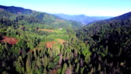 Aerial view of Carpathians mountains video