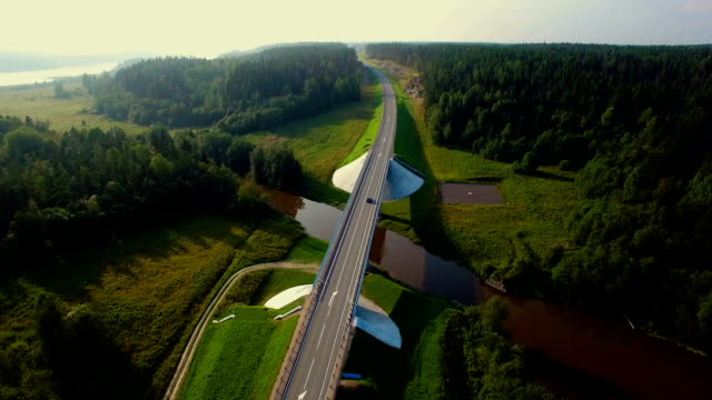 aerial view of cars going over the bridge in the forest video