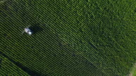 Aerial view of Champagne vineyards, Aube department, Les Riceys video