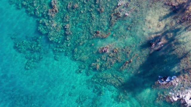Aerial View Of Crystal Clear Tropical Blue Water Ocean Water From Above video