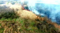 Aerial view of dry grass burning in steppe video