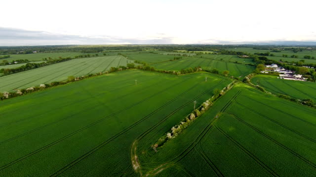Aerial view of fields, Ireland video