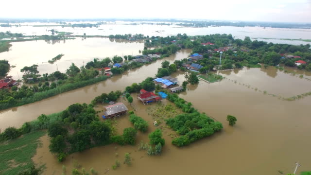 Aerial view of flood in Ayutthaya Province,Thailand. video