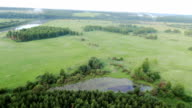 Aerial View of forest, field, lake video