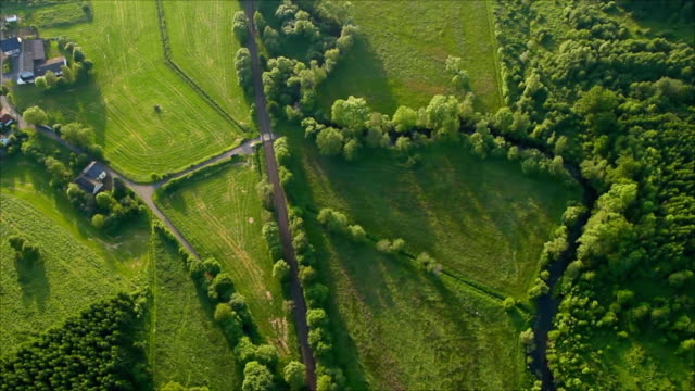 Aerial view of green fields video
