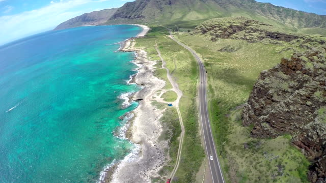 Aerial View of Hawaiian Beach video