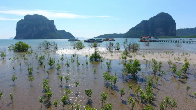 Aerial View of Koh mook in the Andaman Sea, Thailand video