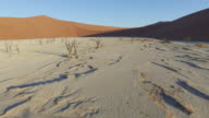 4K aerial view of male tourist walking over Dead Vlei in the Namib desert inside the Namib-Naukluft National Park video