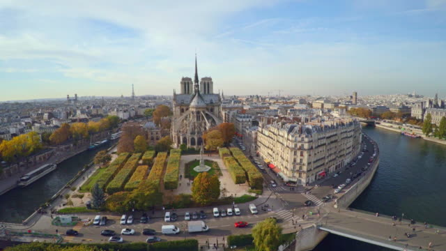 Aerial view of Paris with Notre Dame cathedral video