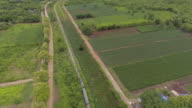 Aerial View of Passenger Train Arriving On Station video