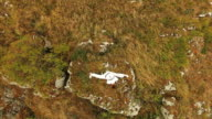Aerial view of performance of training by master on golden rock video
