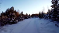 Aerial View of Road in Forest during Winter video