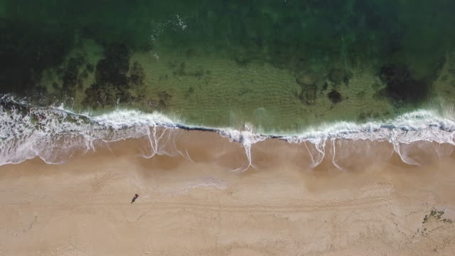 4K Aerial view of sea and waves breaking on beach video