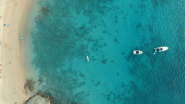 aerial view of sea beach and traveler activities on beach video