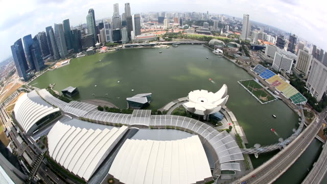 HD: Aerial view of Singapore Cityscape video