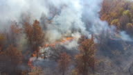 Aerial view of smoke and flames burning a wooded area video