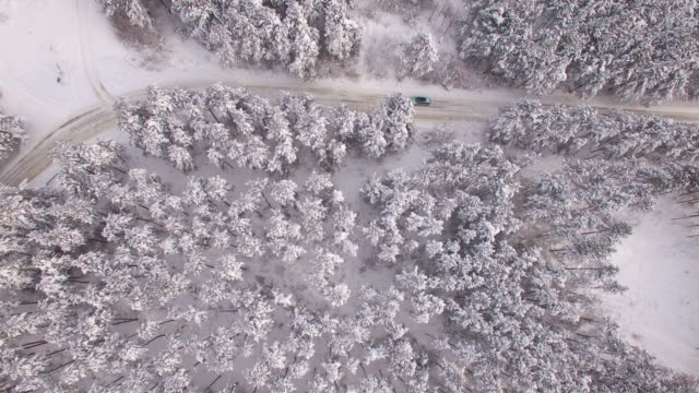 4K Aerial view of snow forest and road video