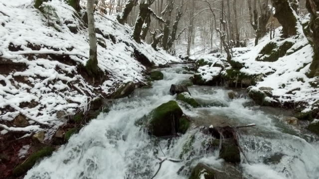 aerial view of snowy river in forest video