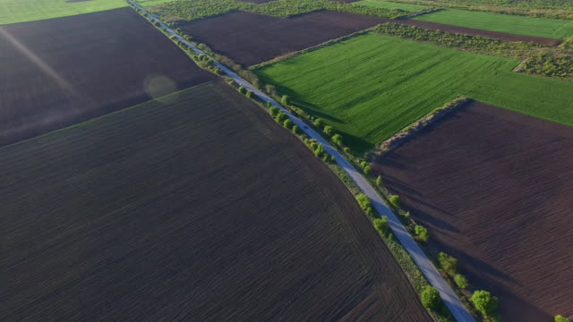 Aerial view of suburban road between fields video