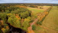 Aerial view of the forest and field in Lahemaa video