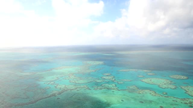Aerial view of the Great barrier reef video