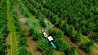 Aerial view of the Sprayer for Applying Fungicides in the Apple Orchard . Slow Motion video