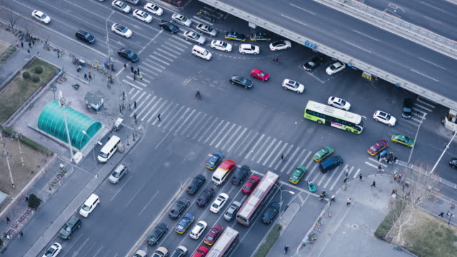 T/L MS HA Aerial View of the Zebra and Pedestrians Cross / Beijing, China video