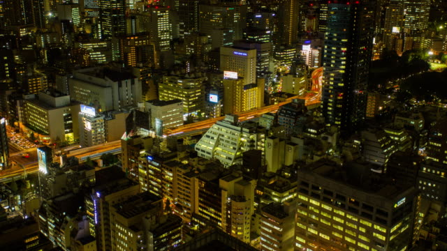 Aerial view of Tokyo at night Time lapse video