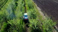 Aerial view of tractor spraying plum trees video