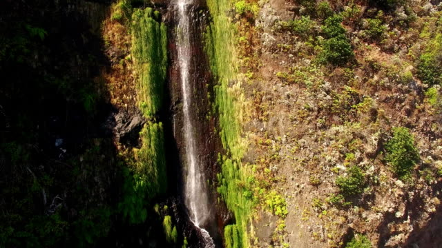 aerial view of waterfall and ocean in Madeira island video