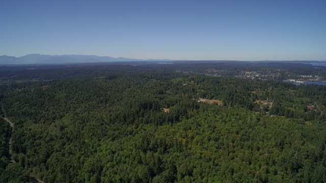 ULTRA HD 4K Aerial view of wooded area - Bainbridge Island, Washington, USA. Flight over video