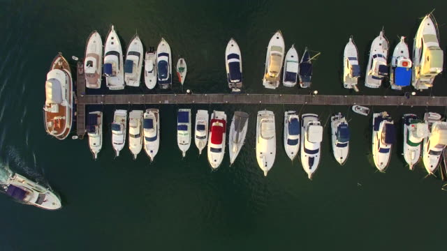 Aerial View of Yachts Moored at a Marina video