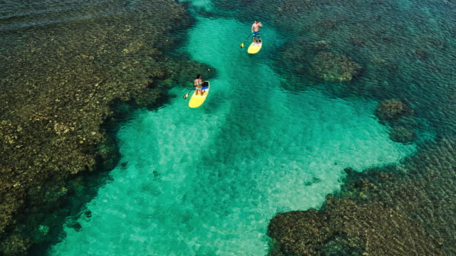 Aerial view of young couple stand up paddling video