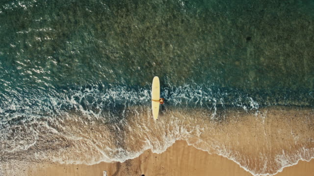 Aerial view of young woman paddling surfboard in blue ocean waves video