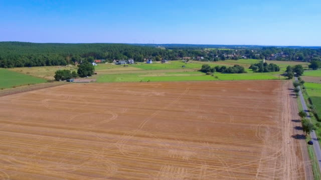 Aerial view over fields green pasture farmland in Lower Saxony, Germany video