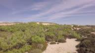 Aerial view over ocean grass sand dunes  at sunny day - Praia de Santa Cruz, Torres Vedras, Portugal video