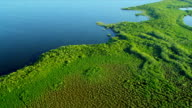 Aerial view showing  ecosystems, Southern Florida video