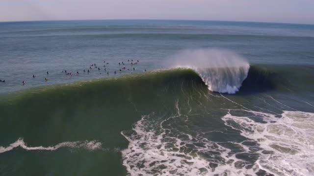 Aerial View Surfers Riding Big Waves at Mavericks video