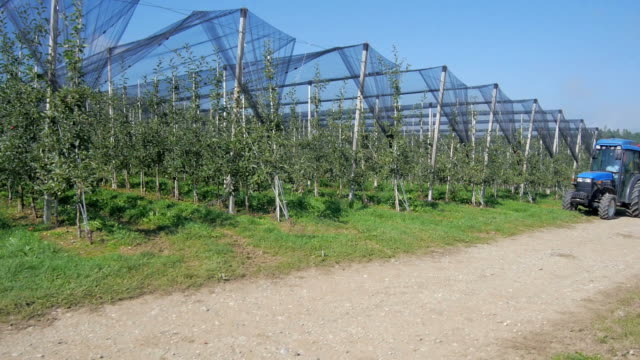 Aerial view: Tractor in the Orchard with netting video