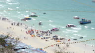 Aerial view: traveler on the beach in summer video