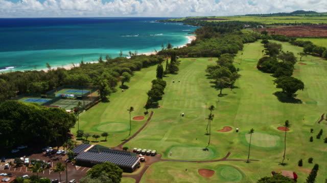 Aerial View Tropical Coastline video