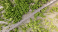 aerial view : Wood bridge through the mangrove forest. video